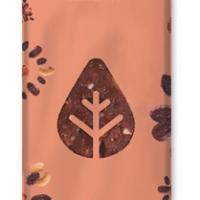 barrita-cacao-natural-athlete